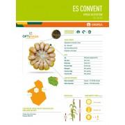 Nasiona kukurydzy EURALIS CONVENT (FAO 240-250)