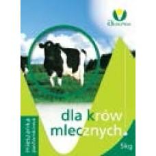 Nasiona Traw Mieszanka Kośna Dla Krów Mlecznych 10kg