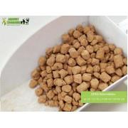 DDGS kukurydziany granulowany. Produkt wolny od GMO.