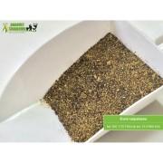 Śruta rzepakowa. Produkt wolny od GMO