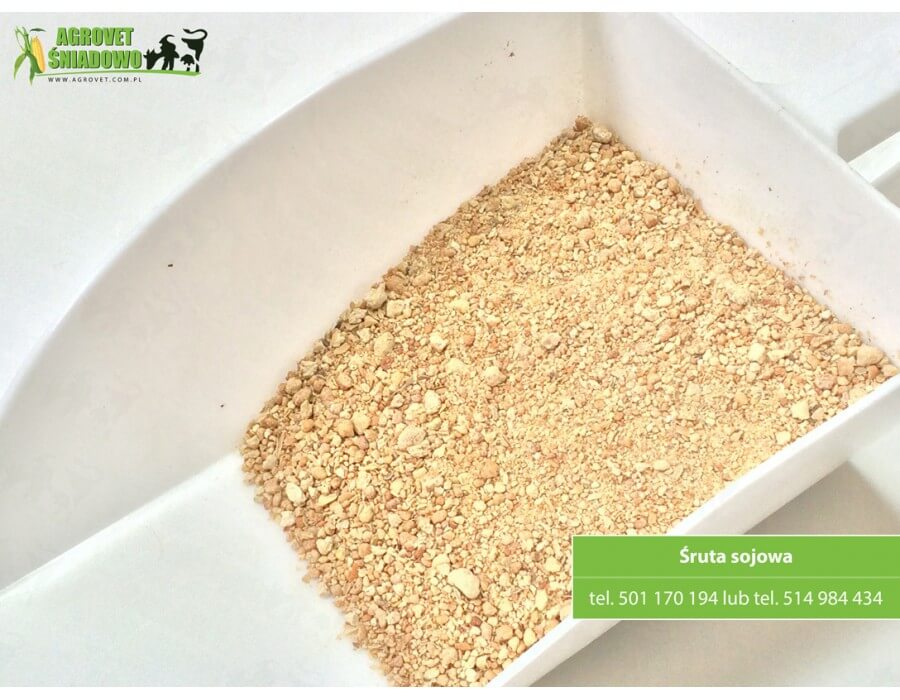 Bardzo dobra Śruta sojowa bez GMO / non GMO, OSM Piątnica   Agrovet Śniadowo IT37