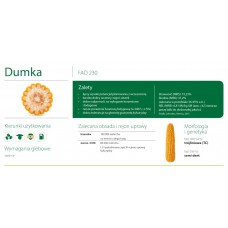 Nasiona kukurydzy SMOLICE DUMKA (FAO 230)