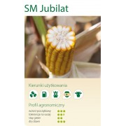 Nasiona kukurydzy SMOLICE JUBILAT (FAO 230-240)