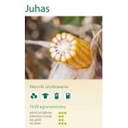 Nasiona kukurydzy SMOLICE JUHAS (FAO 230-240)