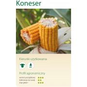 Nasiona kukurydzy SMOLICE KONESER (FAO 260)