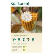 Nasiona kukurydzy SMOLICE KONKURENT (FAO 230-240)