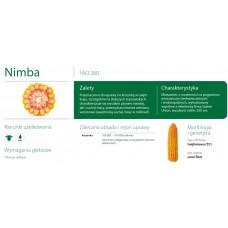 Nasiona kukurydzy SMOLICE NIMBA (FAO 260)