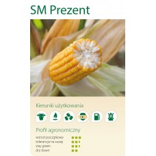 Nasiona kukurydzy SMOLICE PREZENT (FAO 250-250)