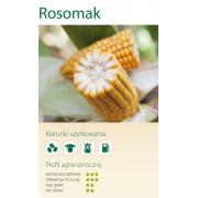 Nasiona kukurydzy SMOLICE ROSOMAK (FAO 250-260)