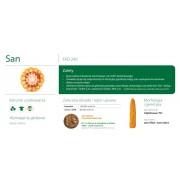 Nasiona kukurydzy SMOLICE SAN (FAO 240)